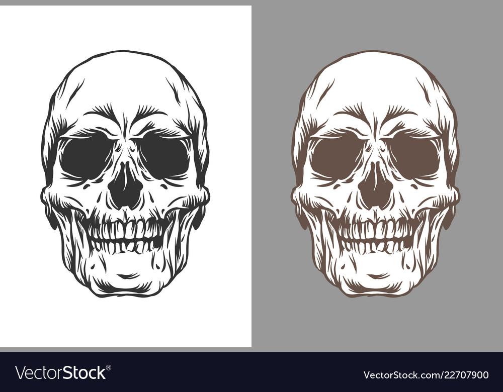 Human skulls in engraving