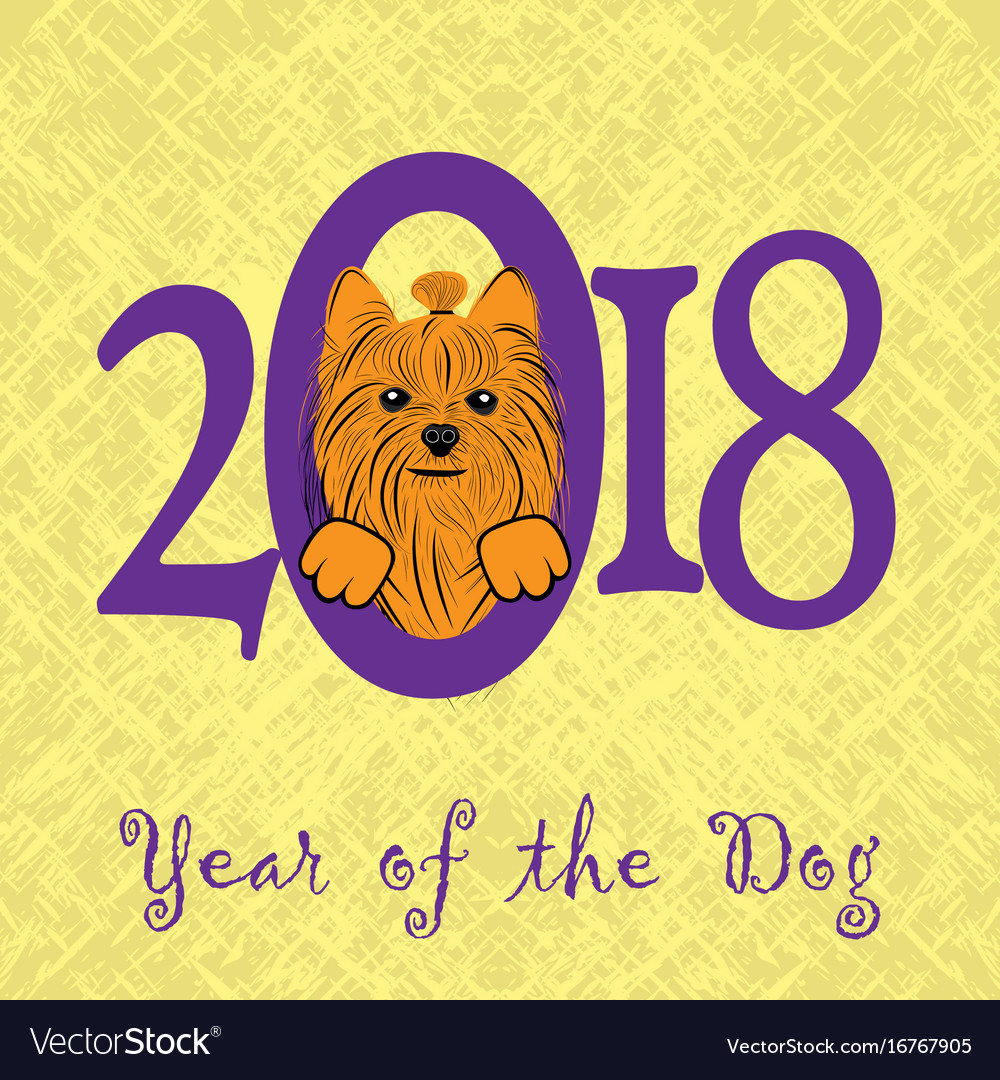 Puppy animal york dog of chinese new year of the