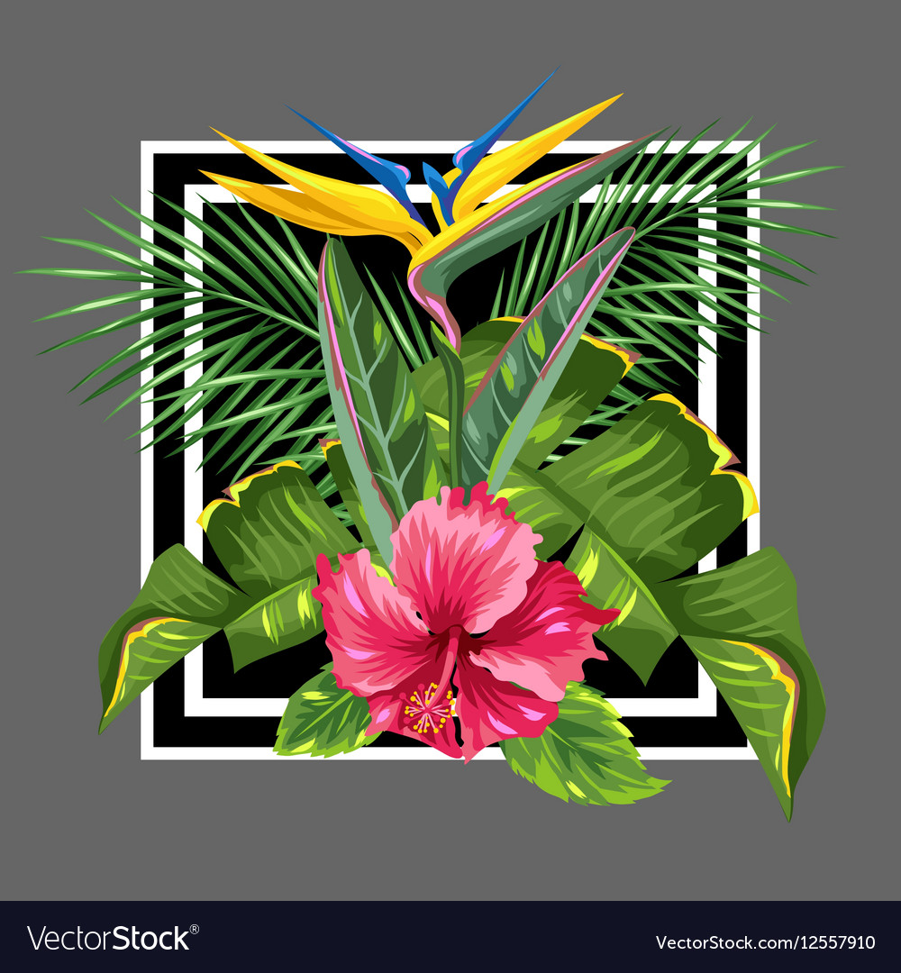 Background with tropical leaves and flowers Palms vector image