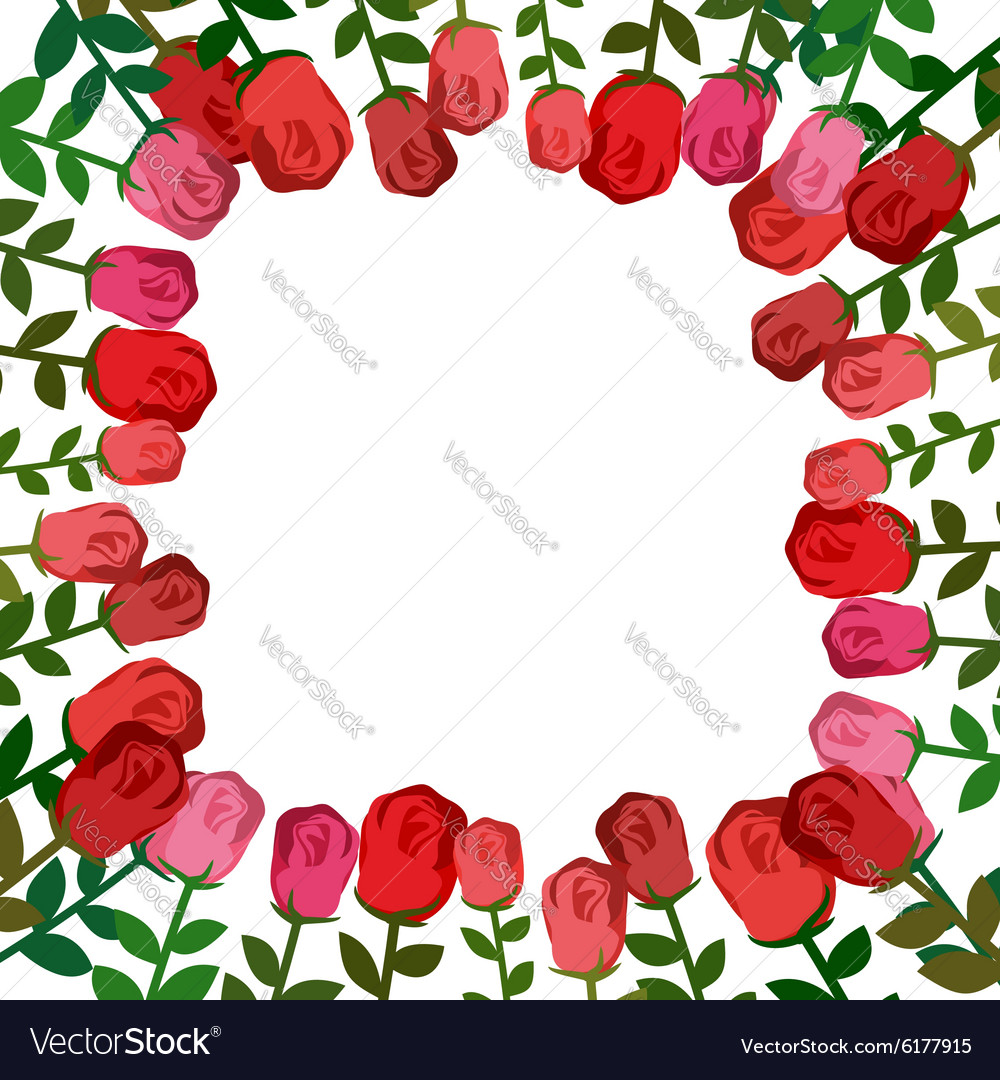 Frame Of Roses Red Background Beautiful Flowers Vector Image On Vectorstock