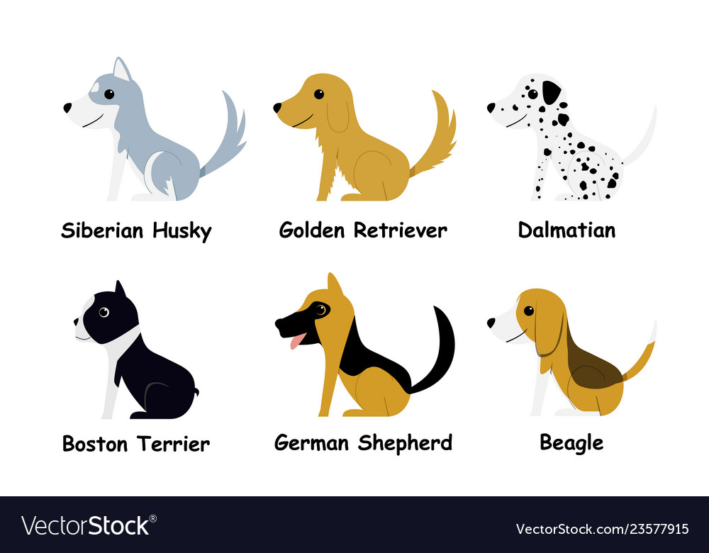 Set of puppy dog in flat style side view