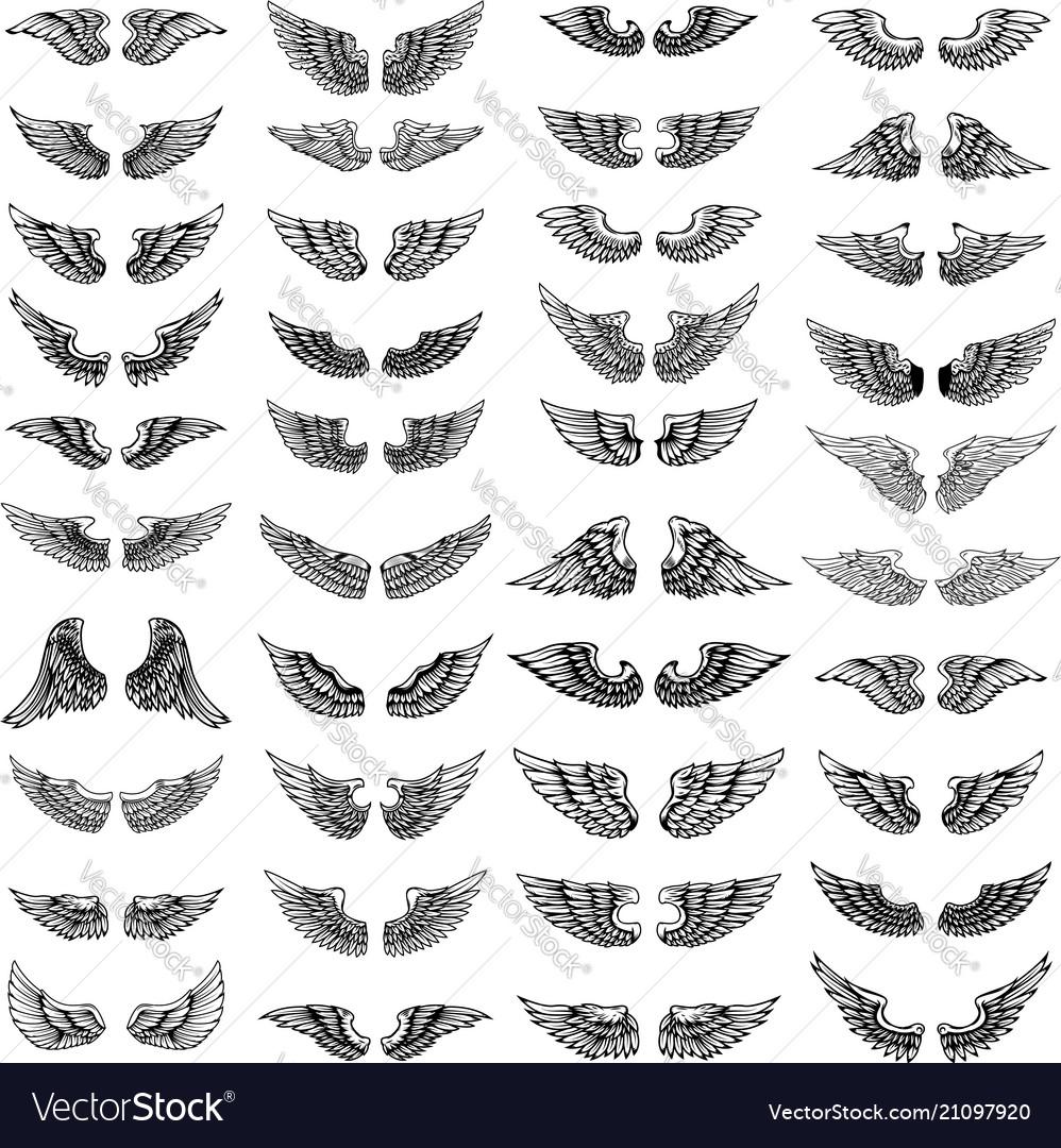 Big set wings on white background design