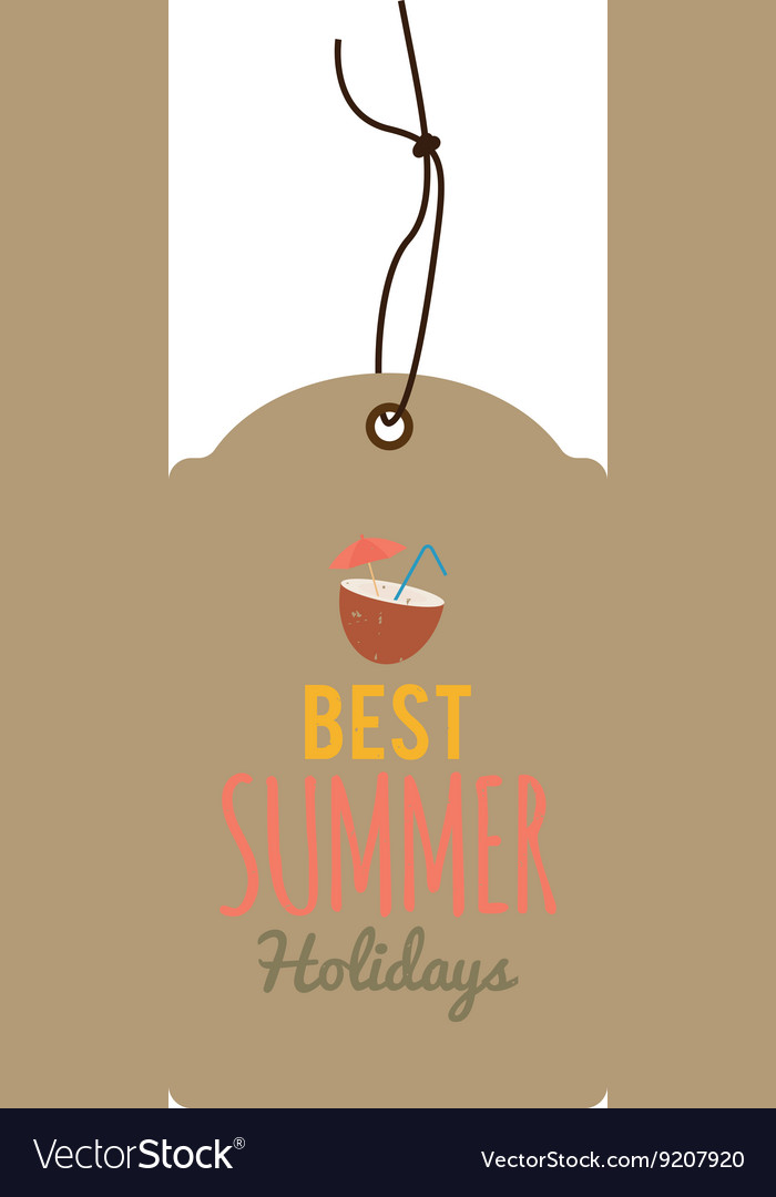 Special summer label vector image