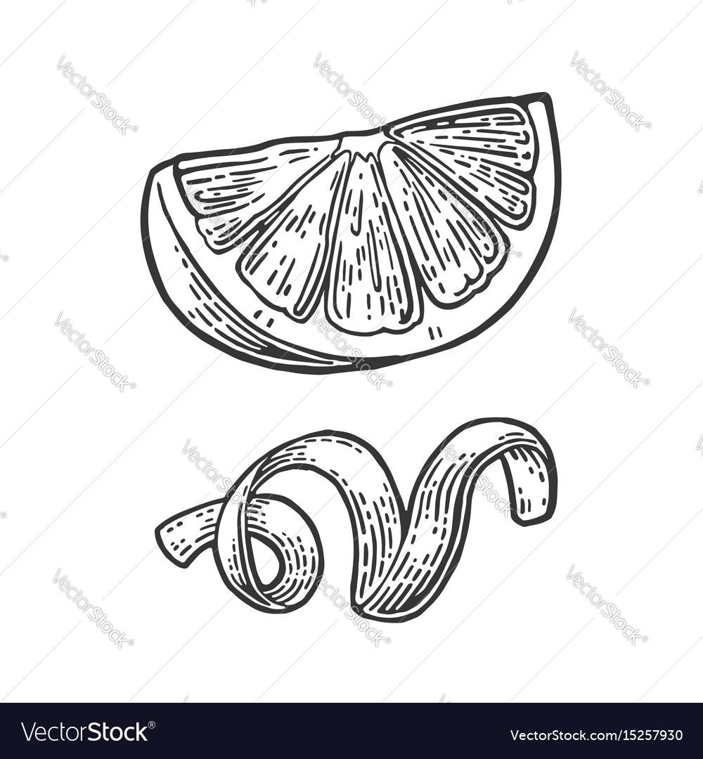 Lemon slice and peel twirled black vintage vector image
