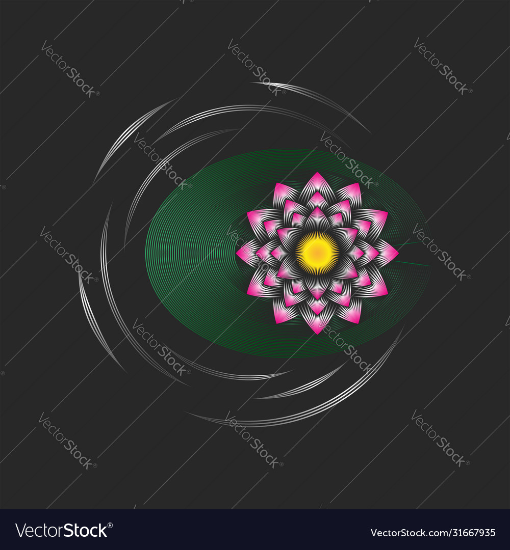 Lotus flower with a green leaf on water