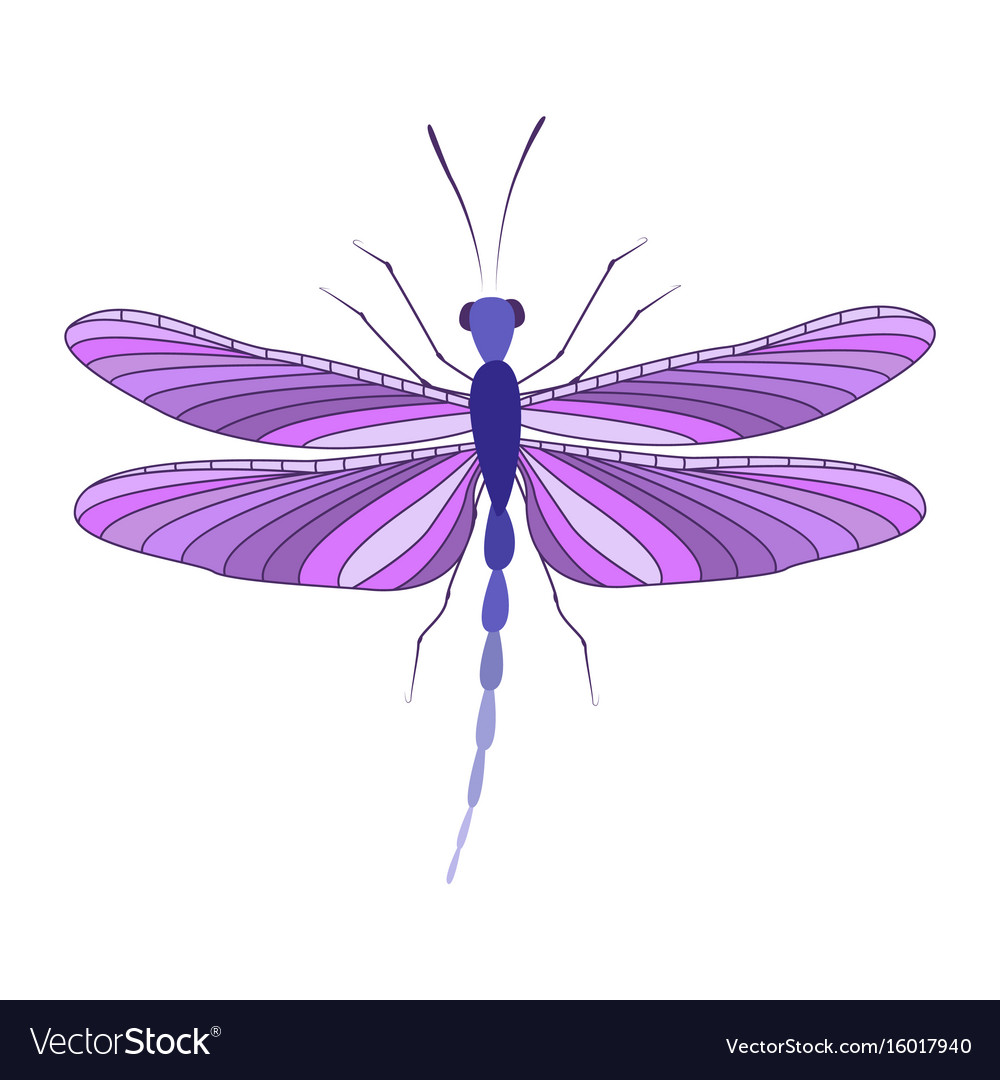 Dragonfly in flight vector image