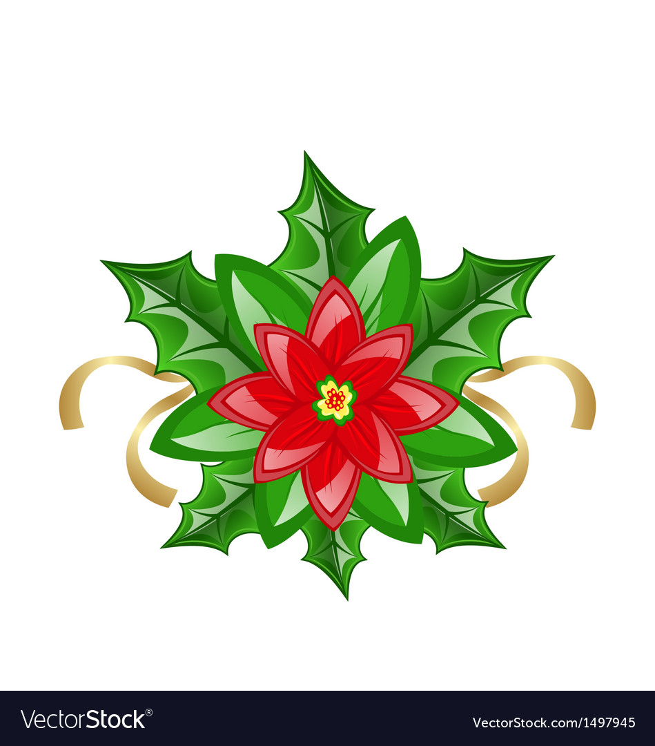 flower poinsettia for christmas decoration vector image - Poinsettia Christmas Decorations