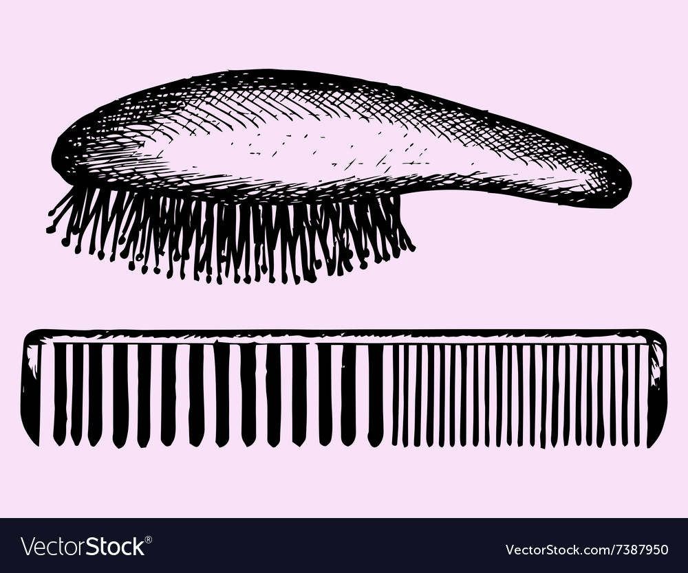 Hair brush comb vector image