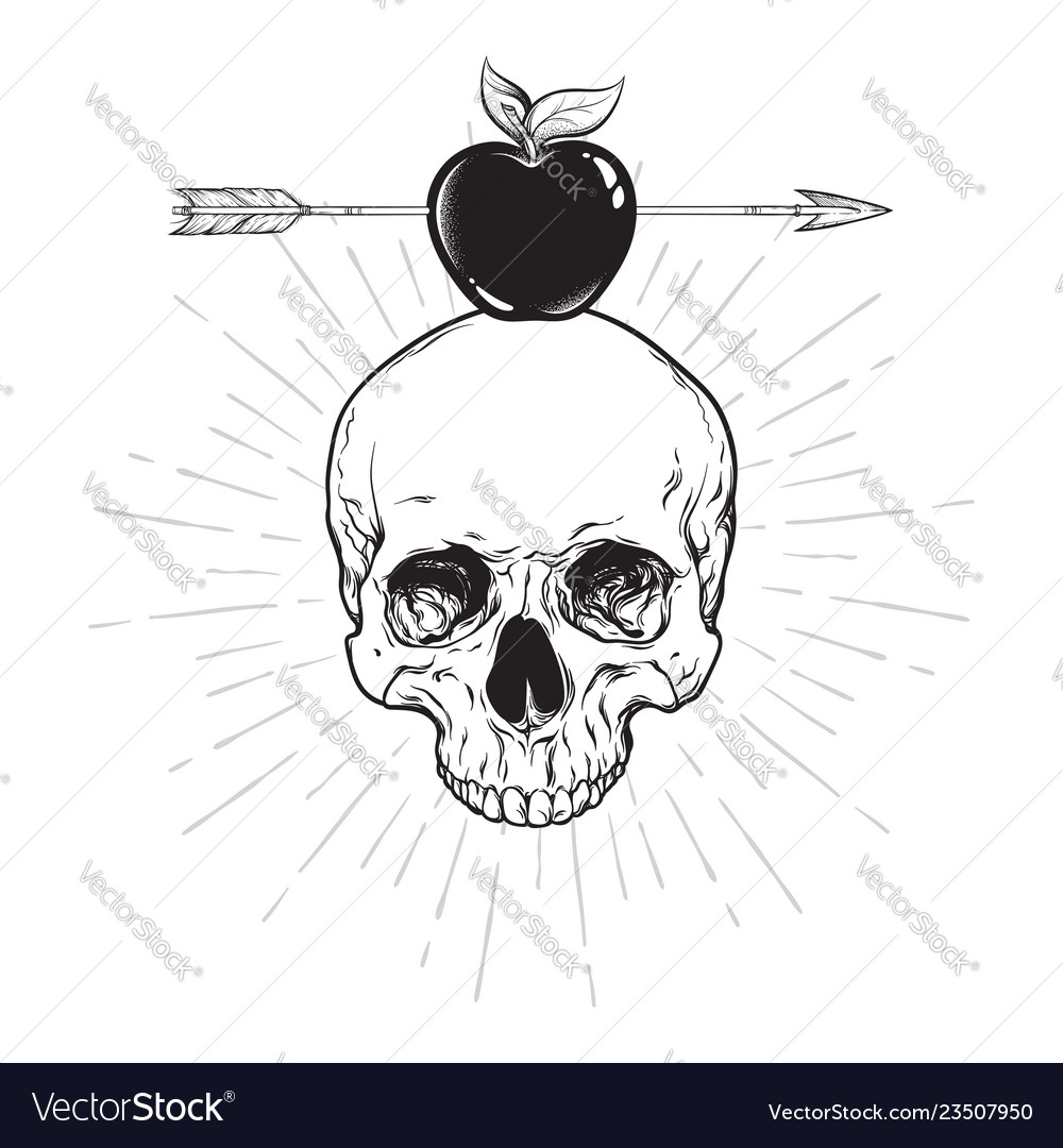 Human skull and apple pierced with arrow line art