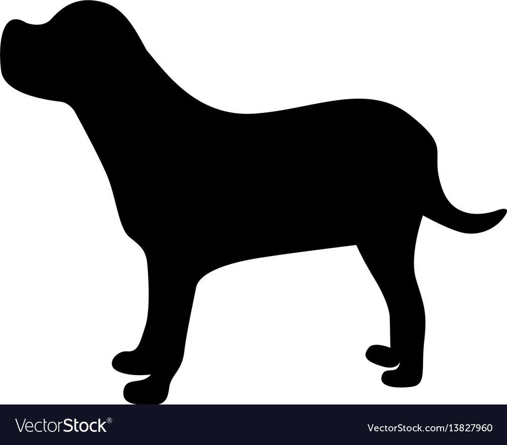 Black figure retriever dog animal vector image