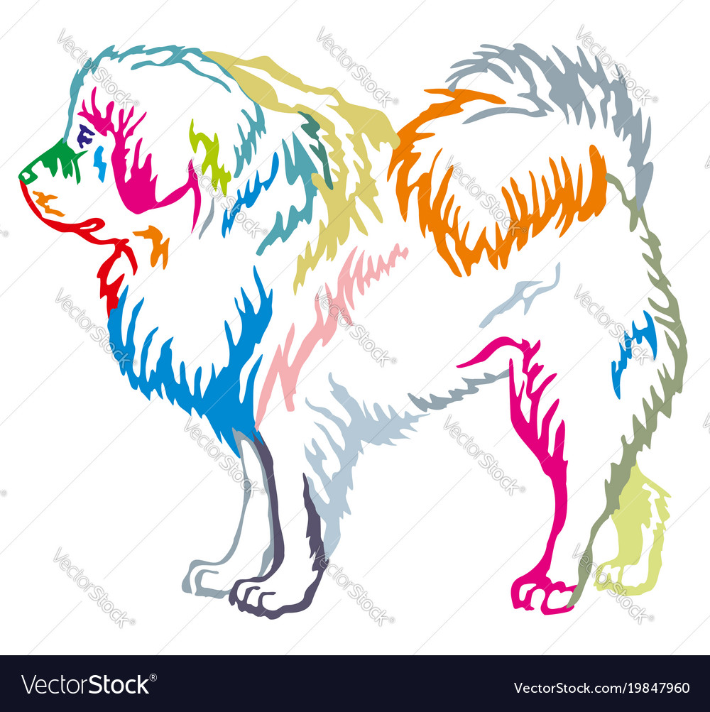 Colorful decorative standing portrait of tibetan vector image