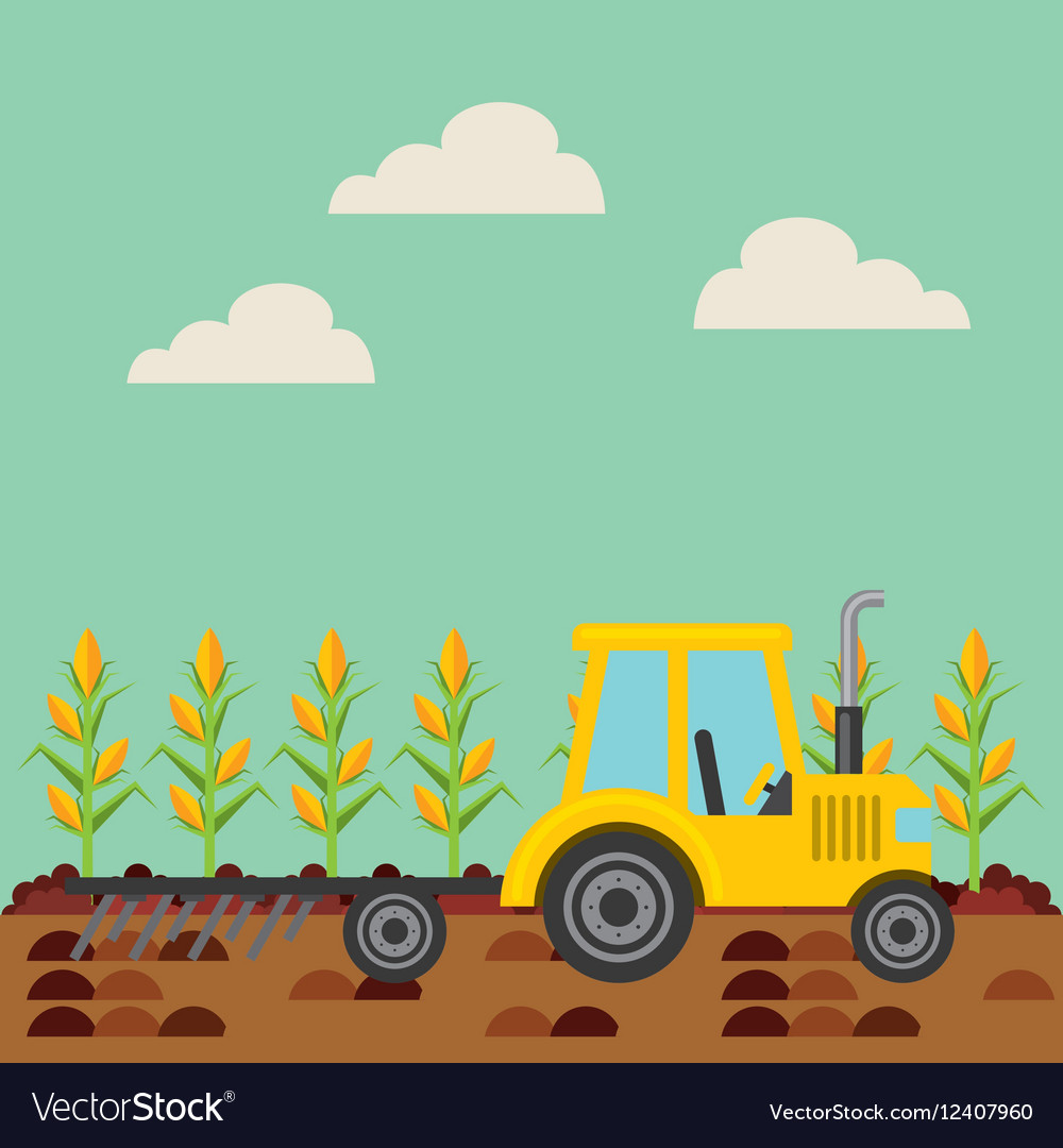 Corn harvest icon