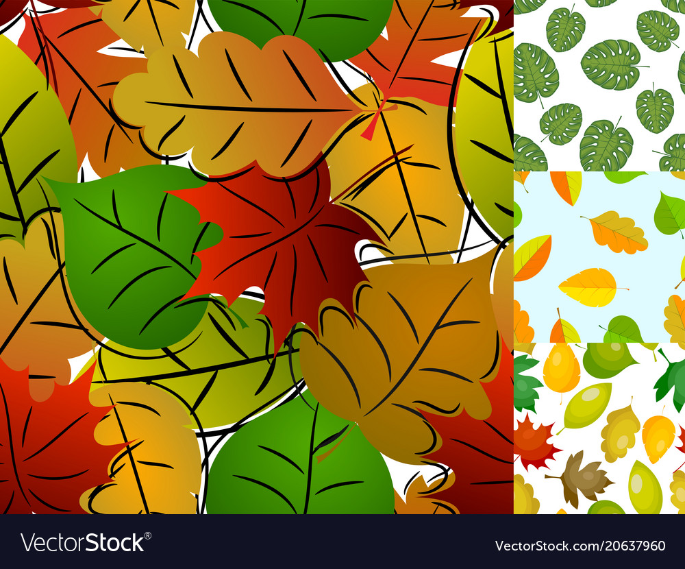 Seamless pattern with leaves background vector image