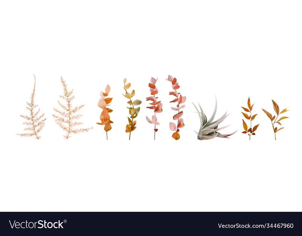 Watercolor floral autumn designer element set leaf