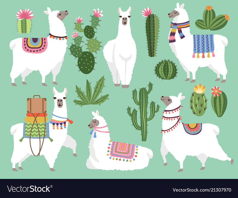 Set of animals llama and alpaca