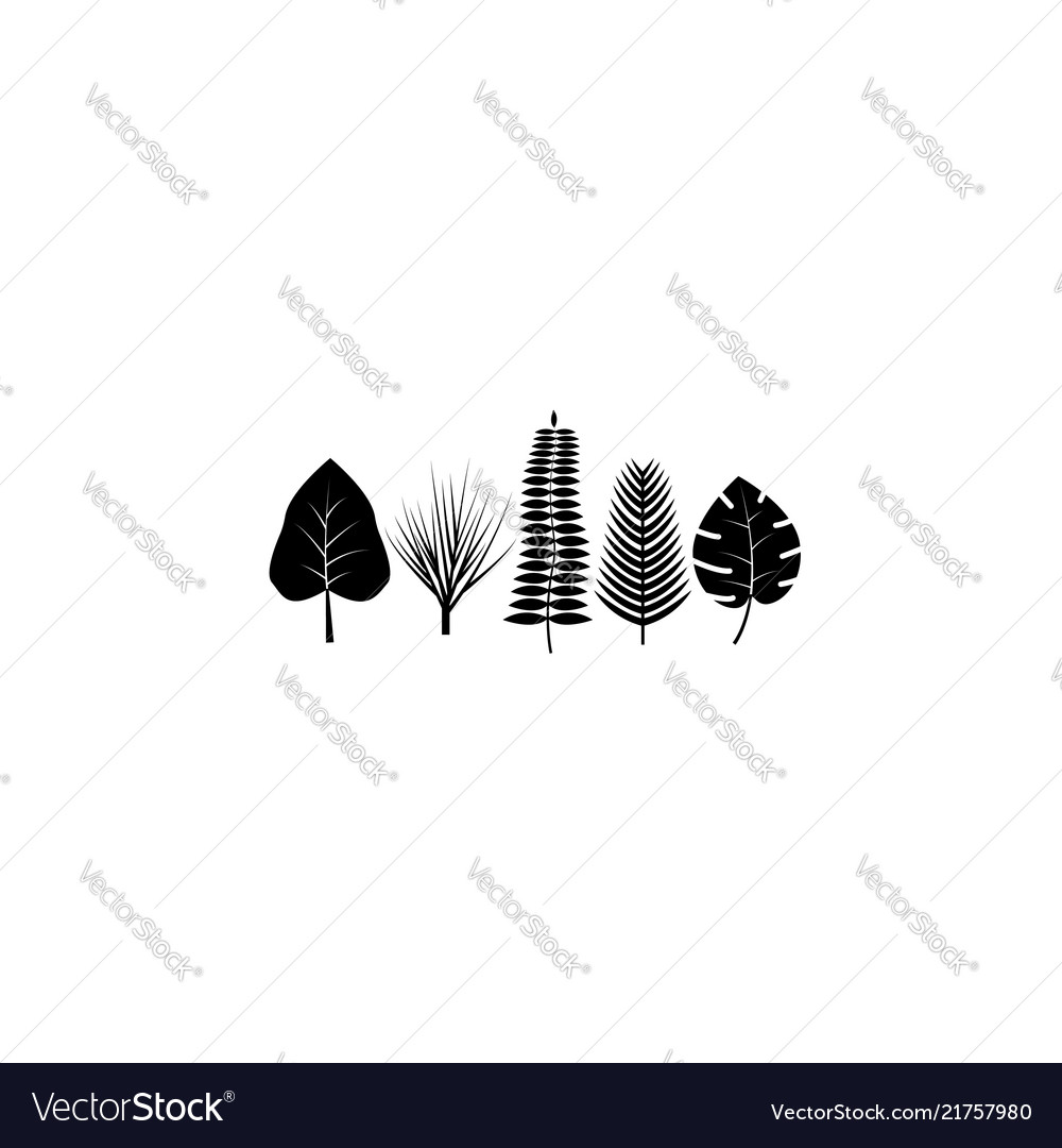 Tropical leaves icon black on white background