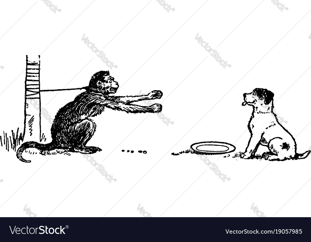 Monkey and dog vintage