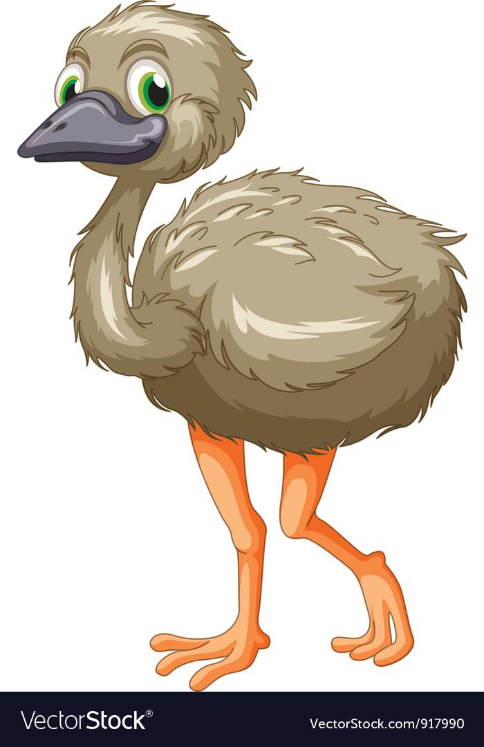 Emu cartoon Royalty Free Vector Image - VectorStock