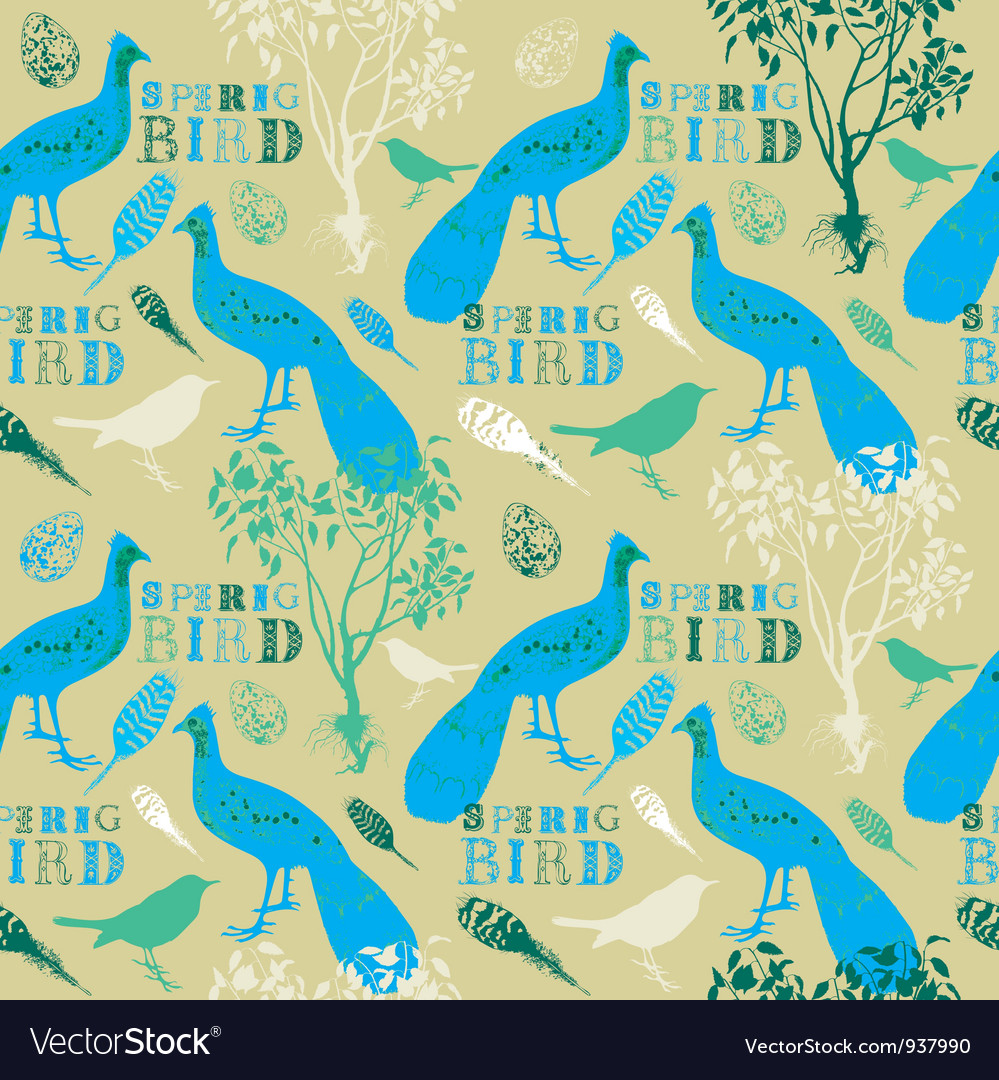 Vintage Spring Birds Pattern Vector Image