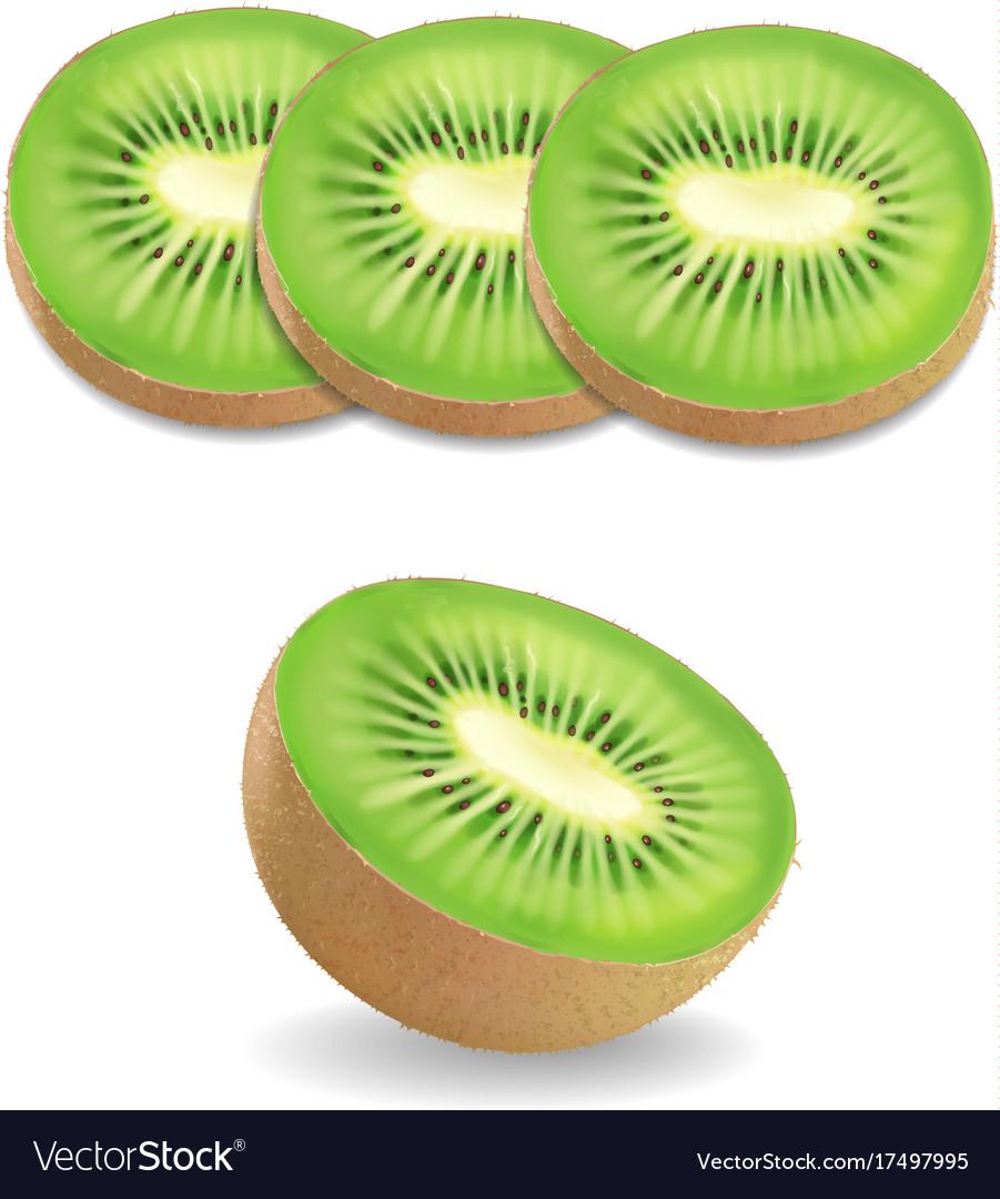 Kiwi fruit realistic on white background