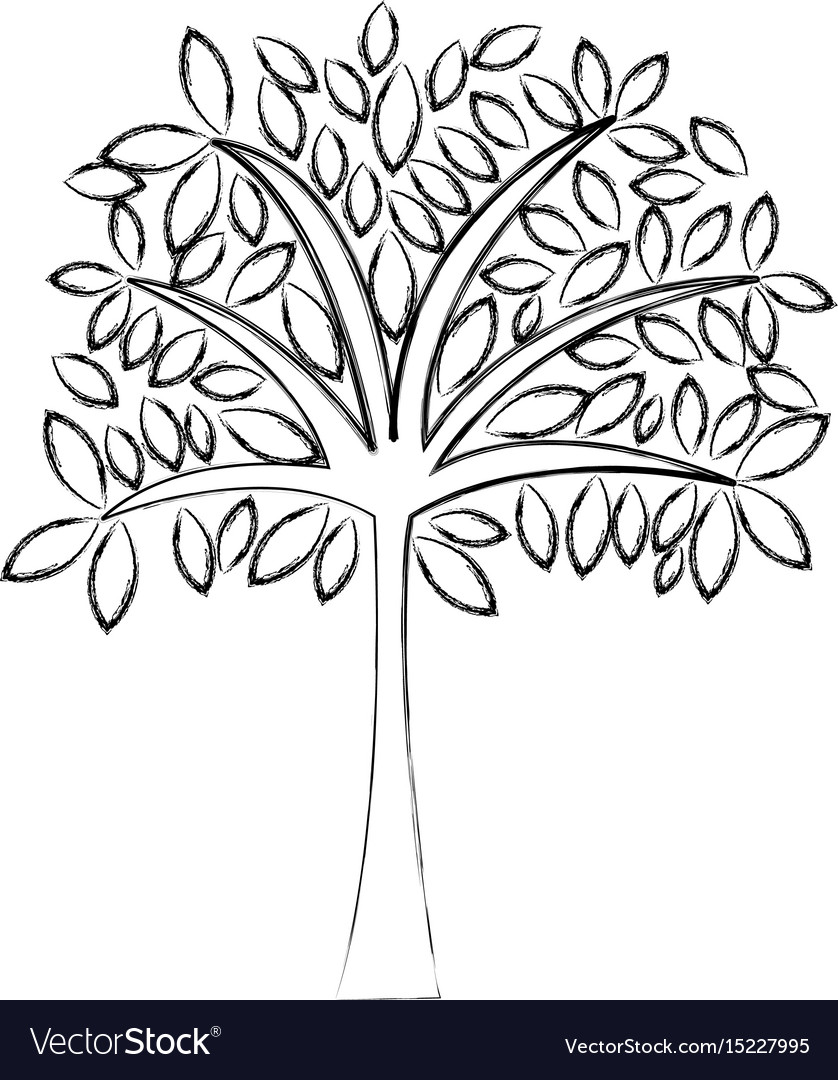 Cartoon Tree Line Drawing / Students get good tree drawing posted in: