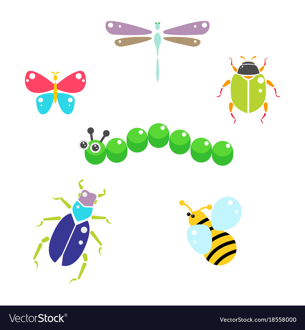 Cartoon insects colorful set on white