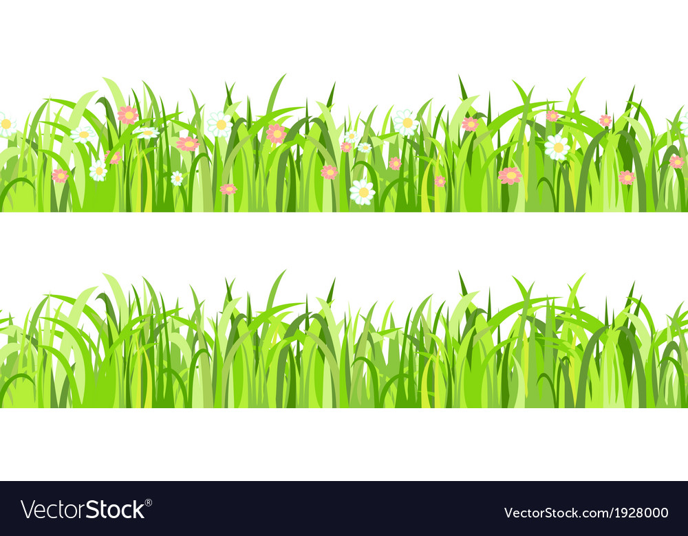Two seamless patterns with grass and flowers