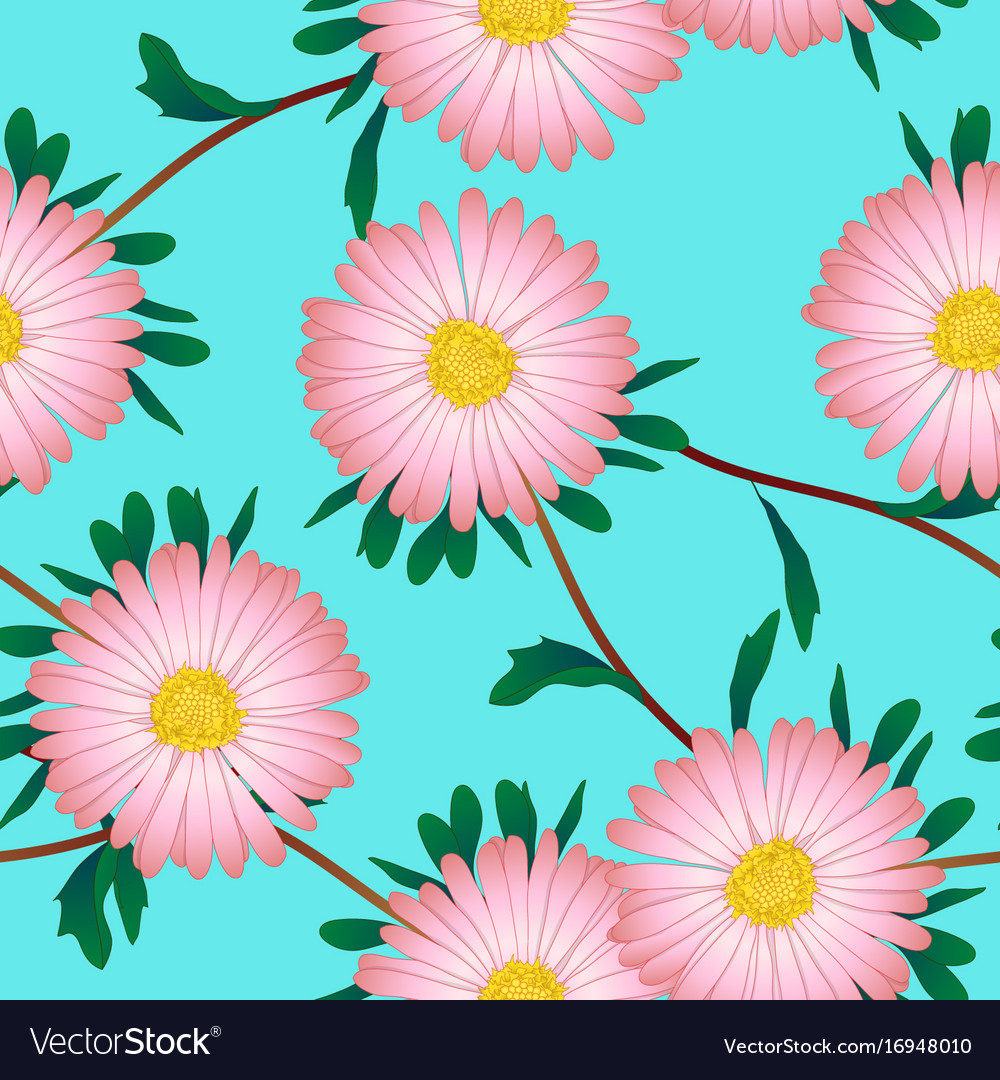 Pink Aster Flower On Blue Background Royalty Free Vector