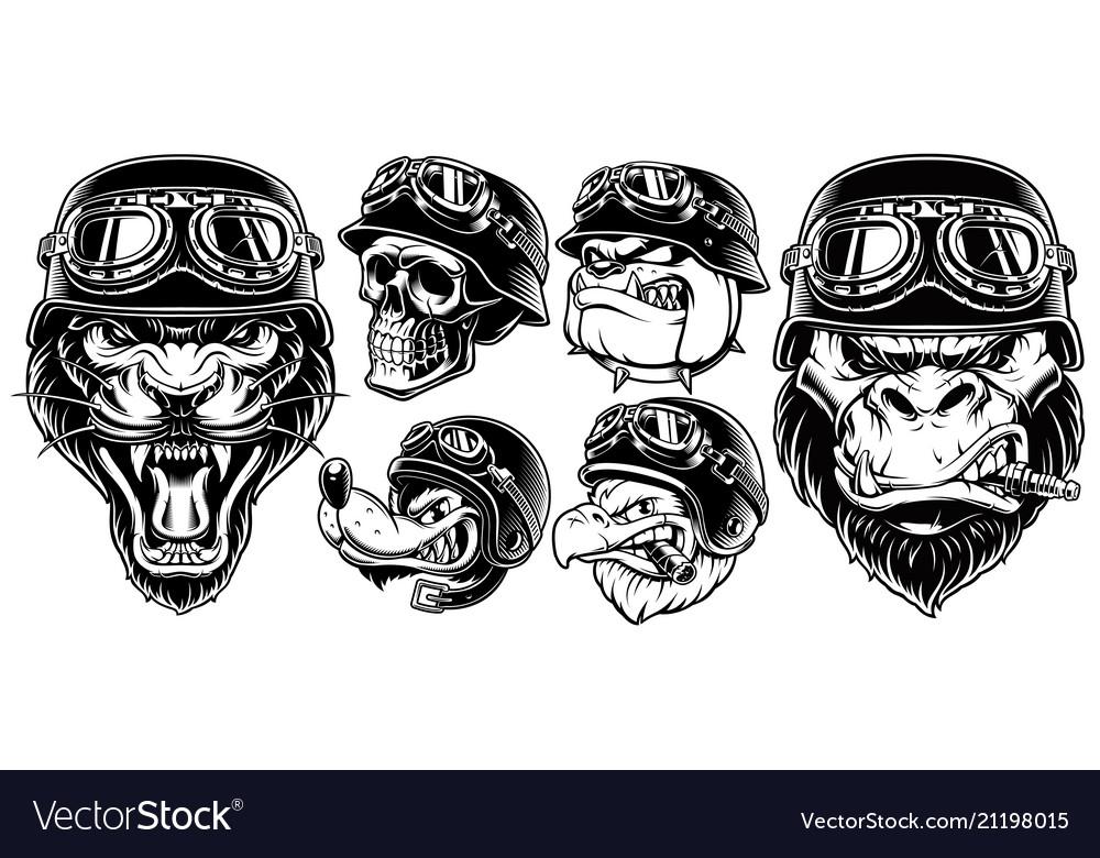 Set of animals bikers