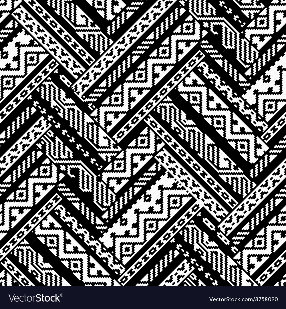 Black and white zig zag ethnic geometric aztec vector image