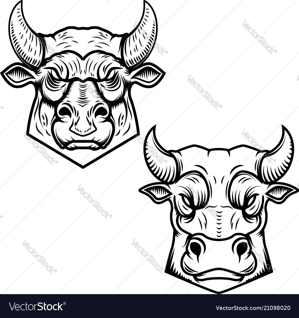 Bull heads isolated on white background design
