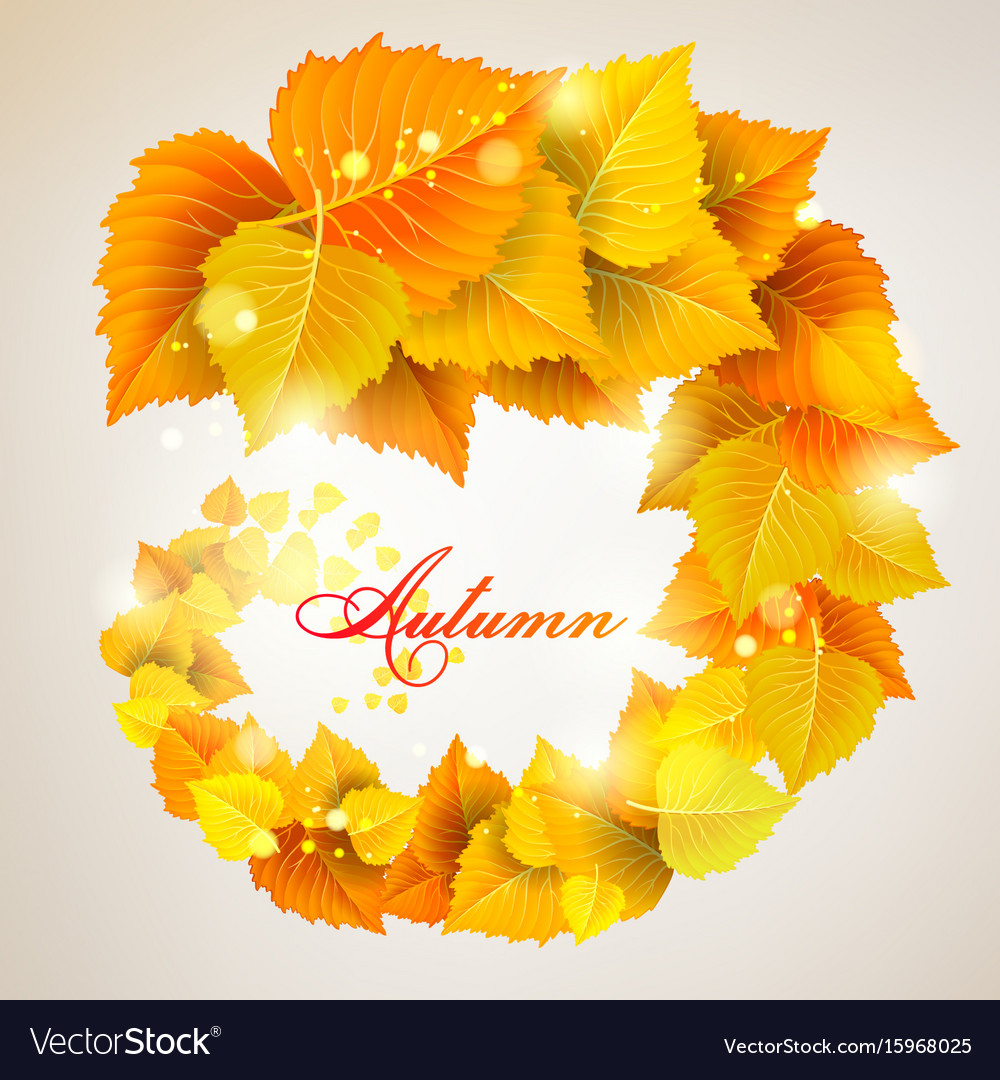 The leaves swirl vector image
