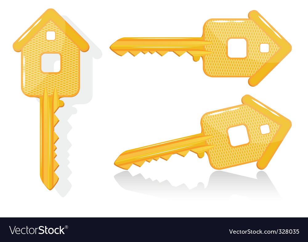 House key illustration vector image