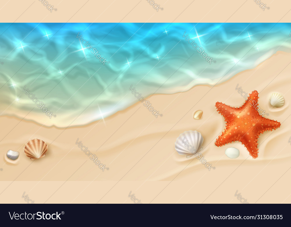Sea cost with ocean wave and shells on sand