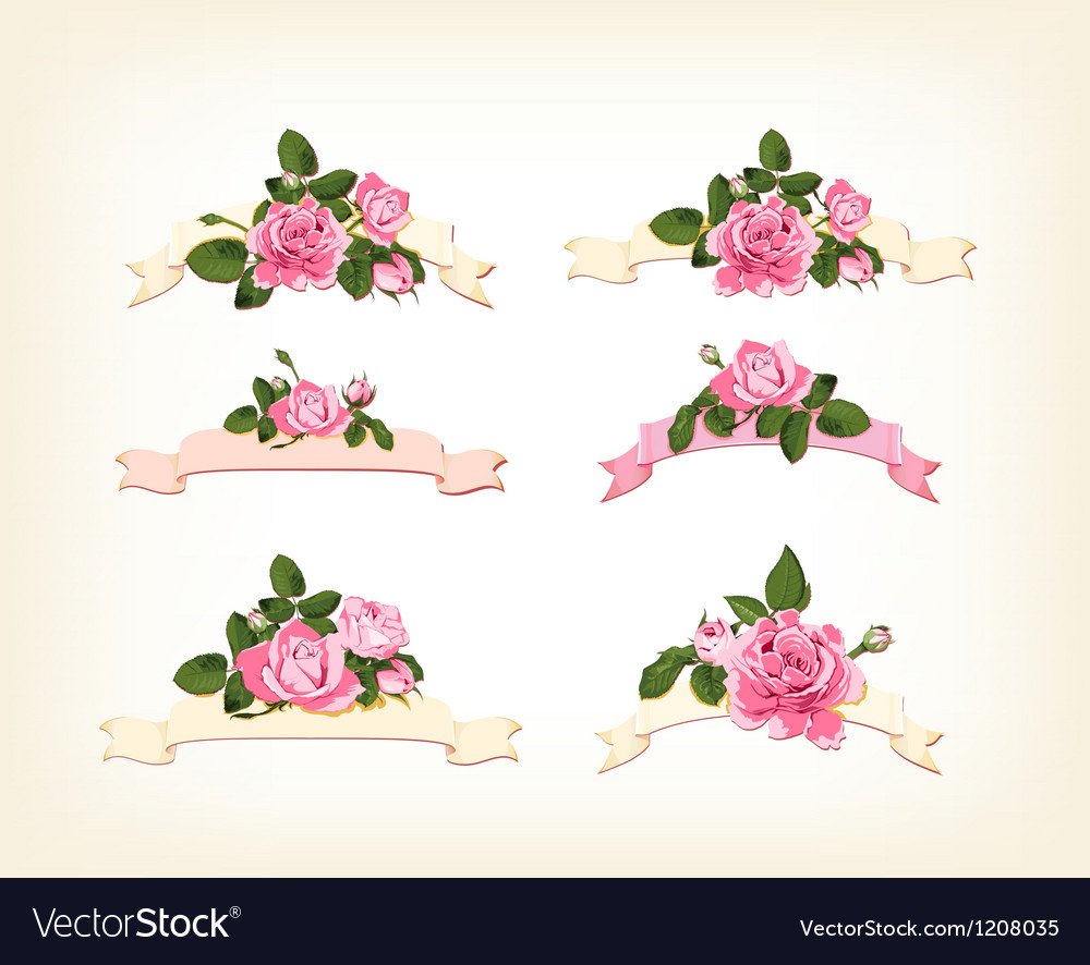 Set of a beautiful colored roses vector image