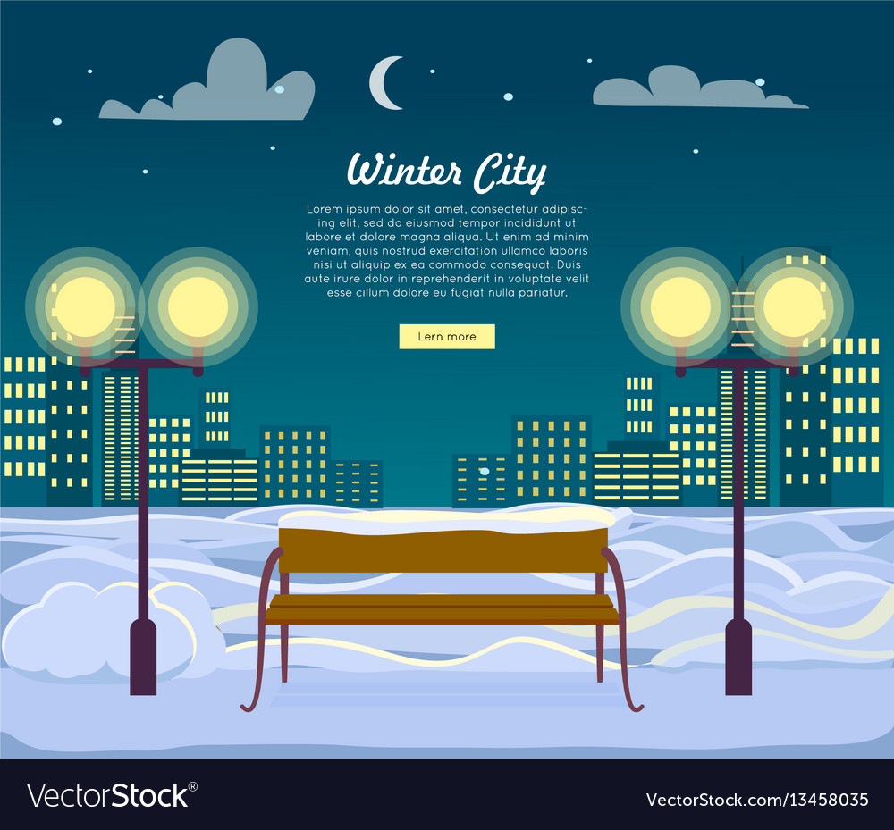 Winter city web banner urban town at night