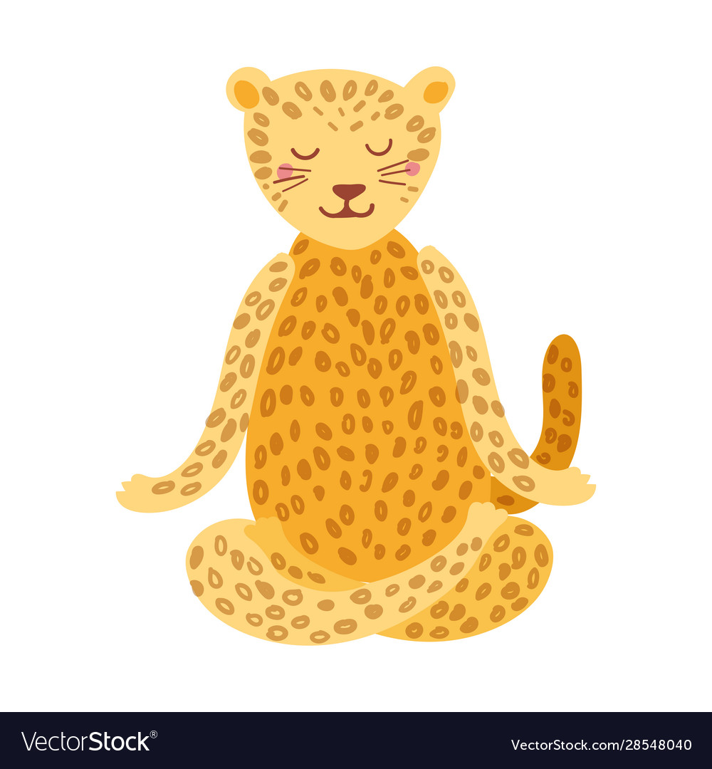 Cartoon Jaguar Performing Yoga Exercise Drawing Vector Image