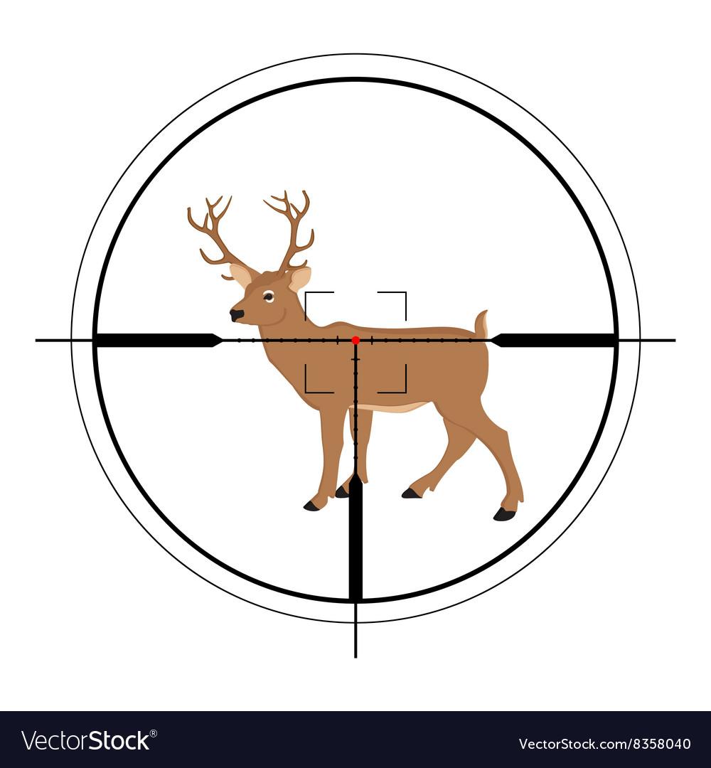 Deer hunting targer