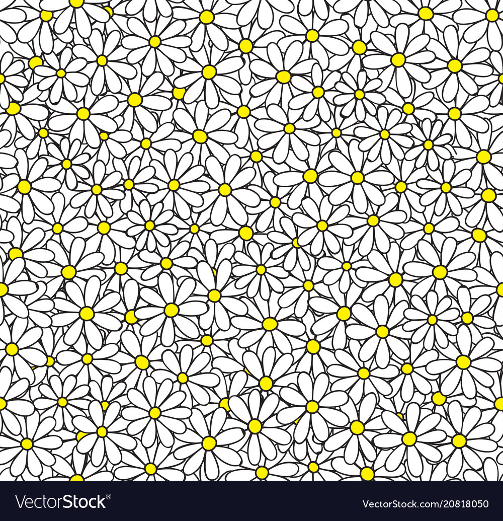 Daisy seamless pattern floral background