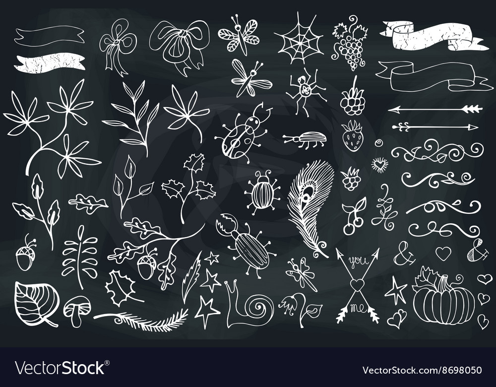 Doodle brunchesinsectsdecor elementhand vector