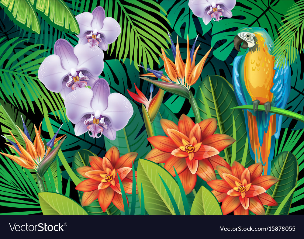 Background With Exotic Tropical Flowers Royalty Free Vector