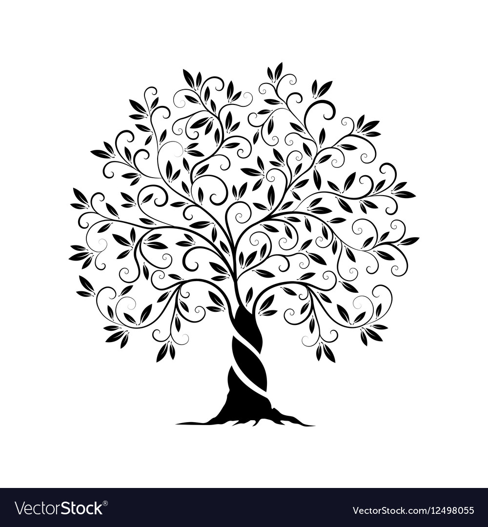 Olive tree outline curl silhouette Royalty Free Vector Image