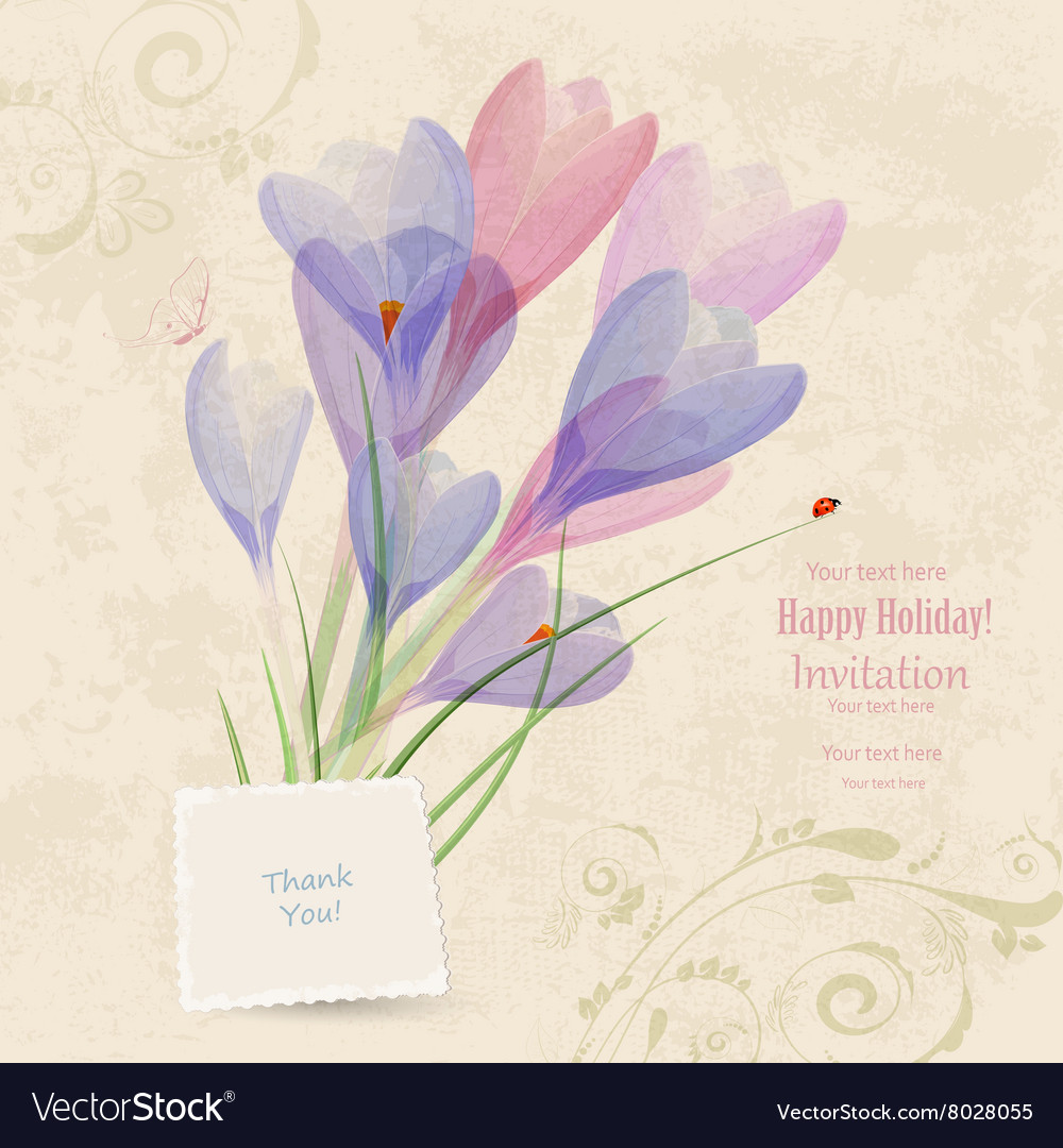 Retro invitation card with spring flowers for your vector image