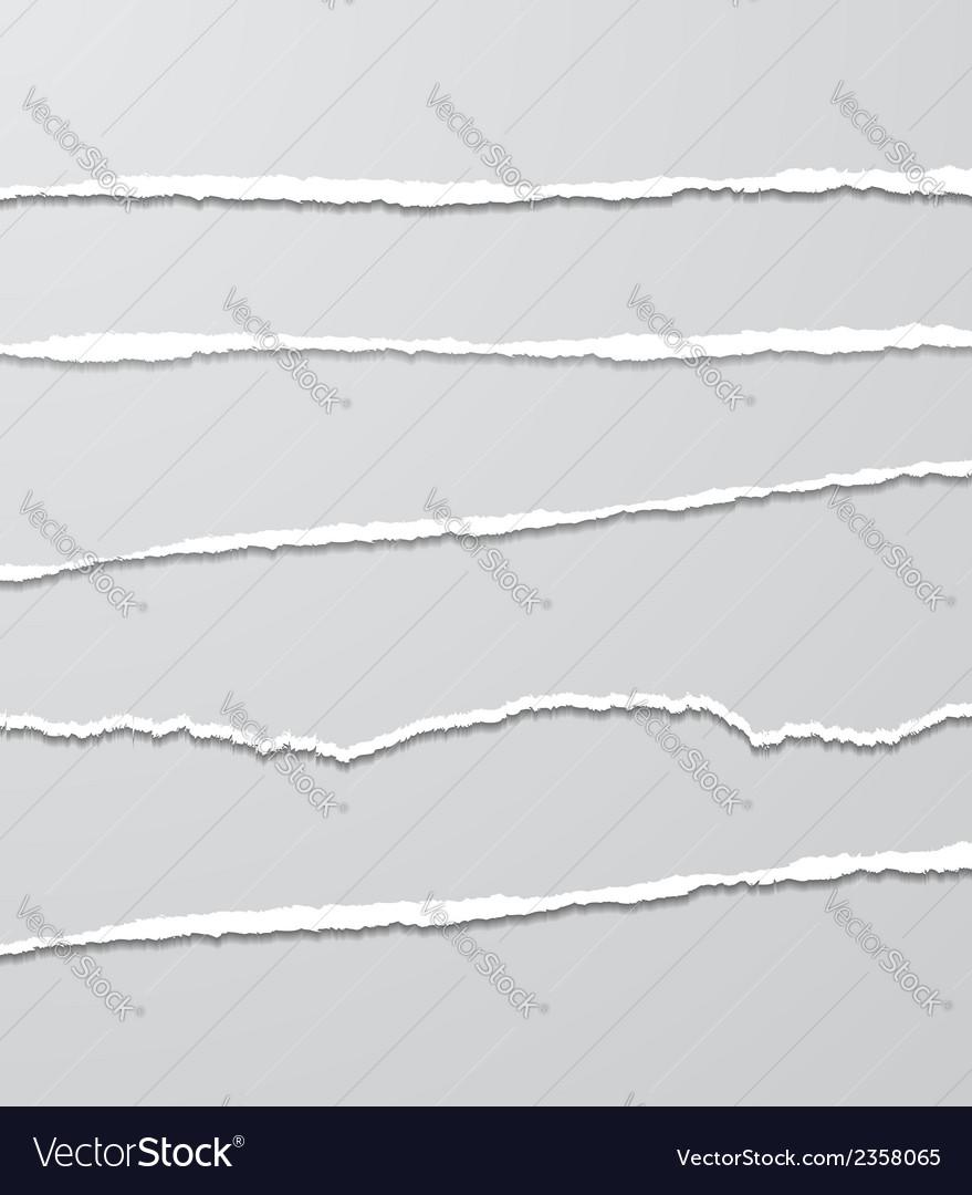 Torn Paper Set vector image