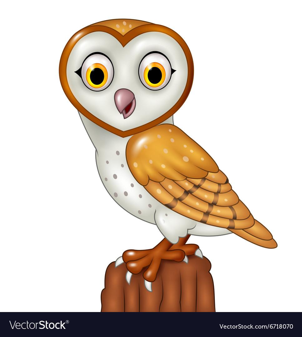 Cartoon Barn Owl Posing Isolated