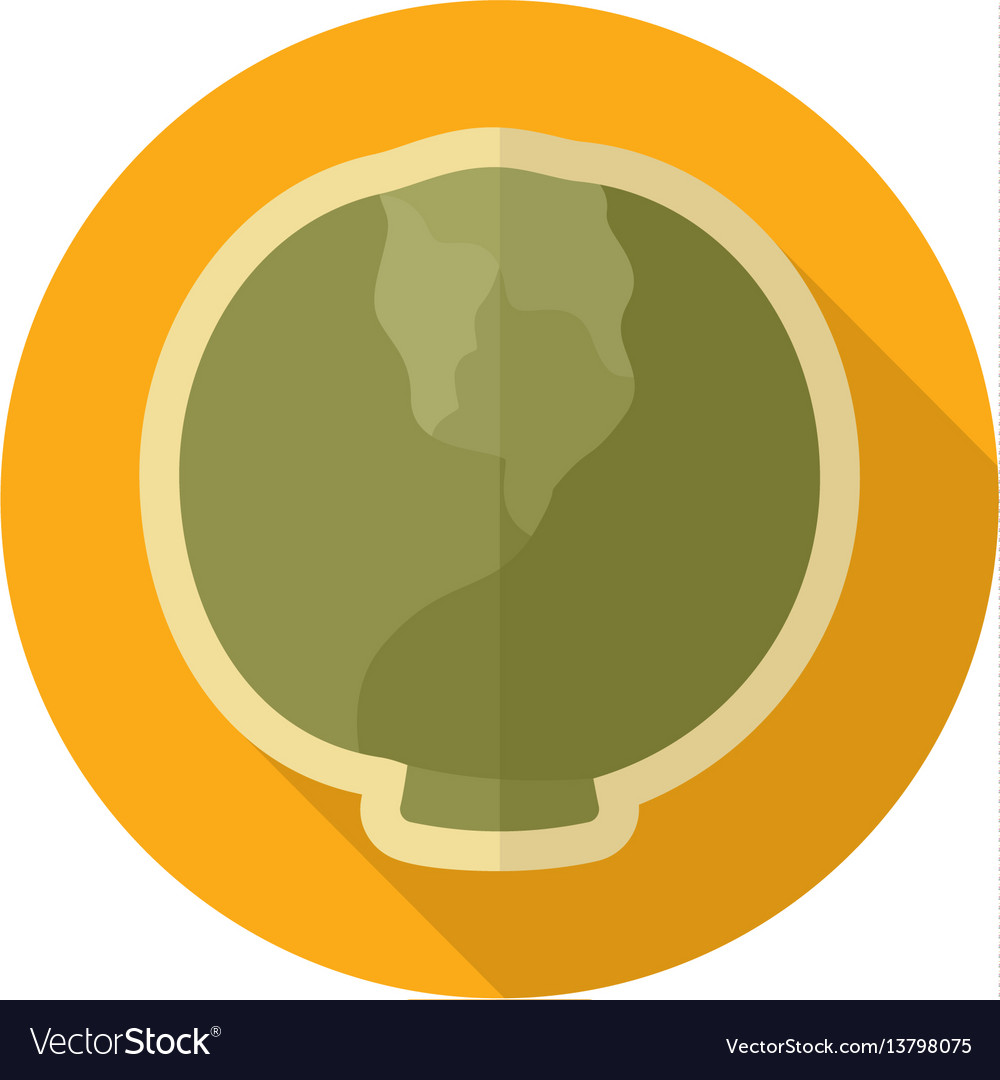 Cabbage flat icon vegetable