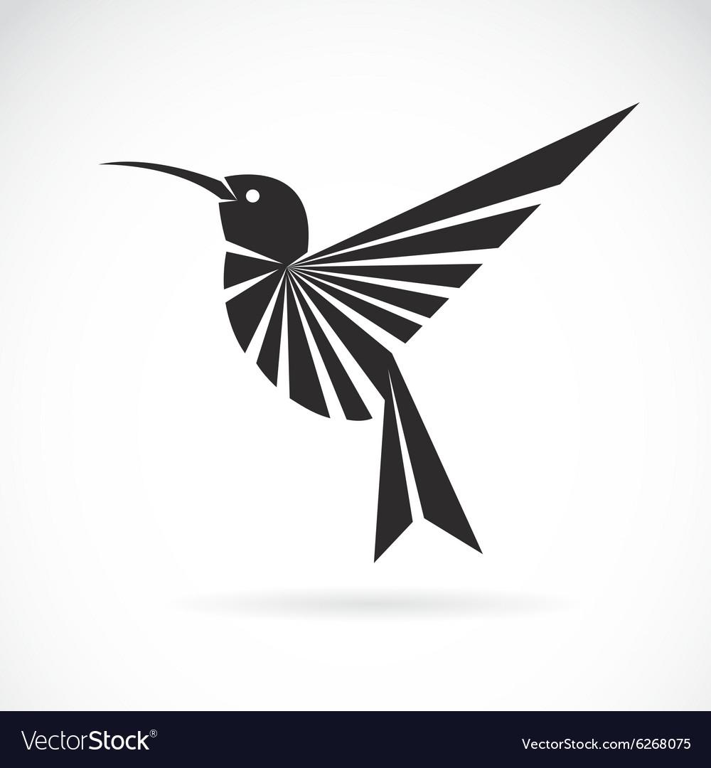 hummingbird royalty free vector image vectorstock