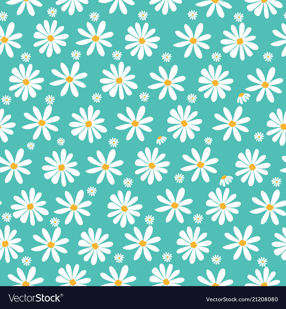 Doodle white daisy flowers pattern on pastel green vector image