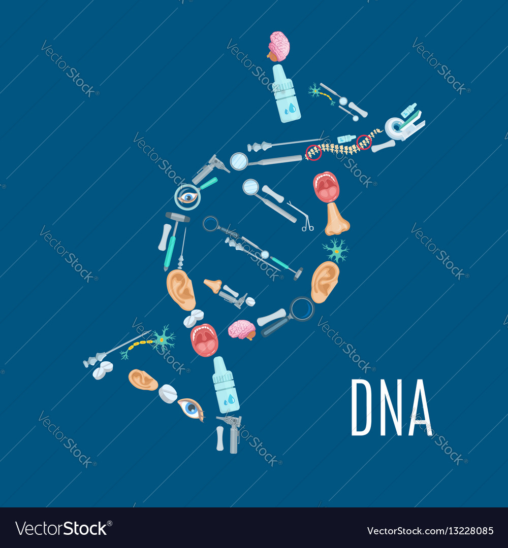 Dna strand symbol with medical examination icons vector image