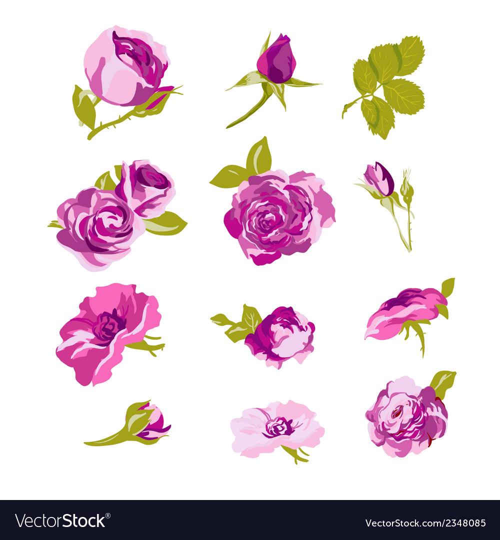 Set of floral design elements flower collection